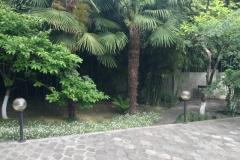 Уютный зеленый дворик