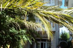 Вид здания ГД Светлана