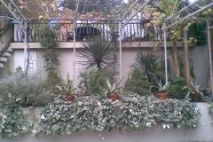 Зеленый двор Надежда